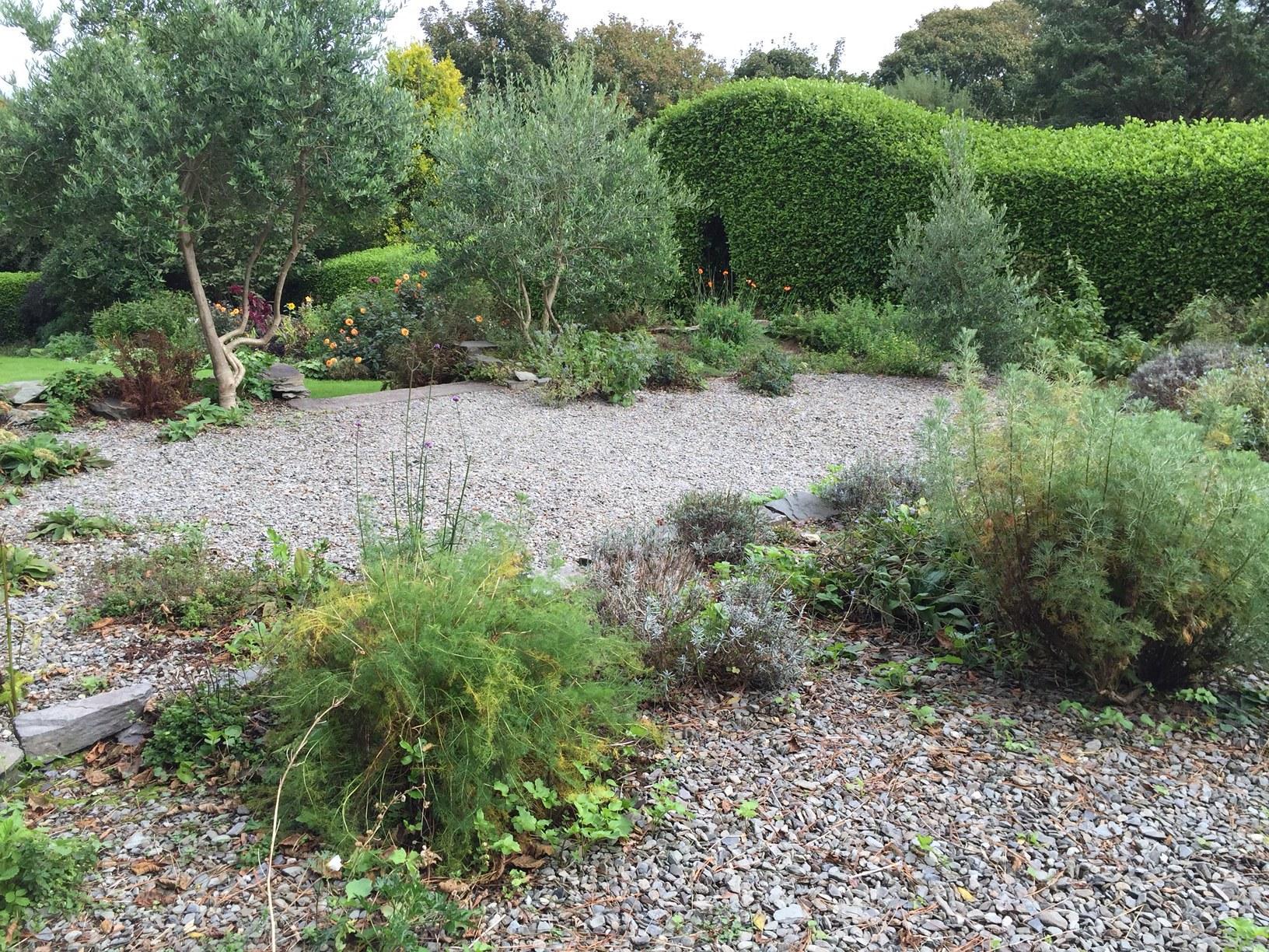 Herb Garden 2017