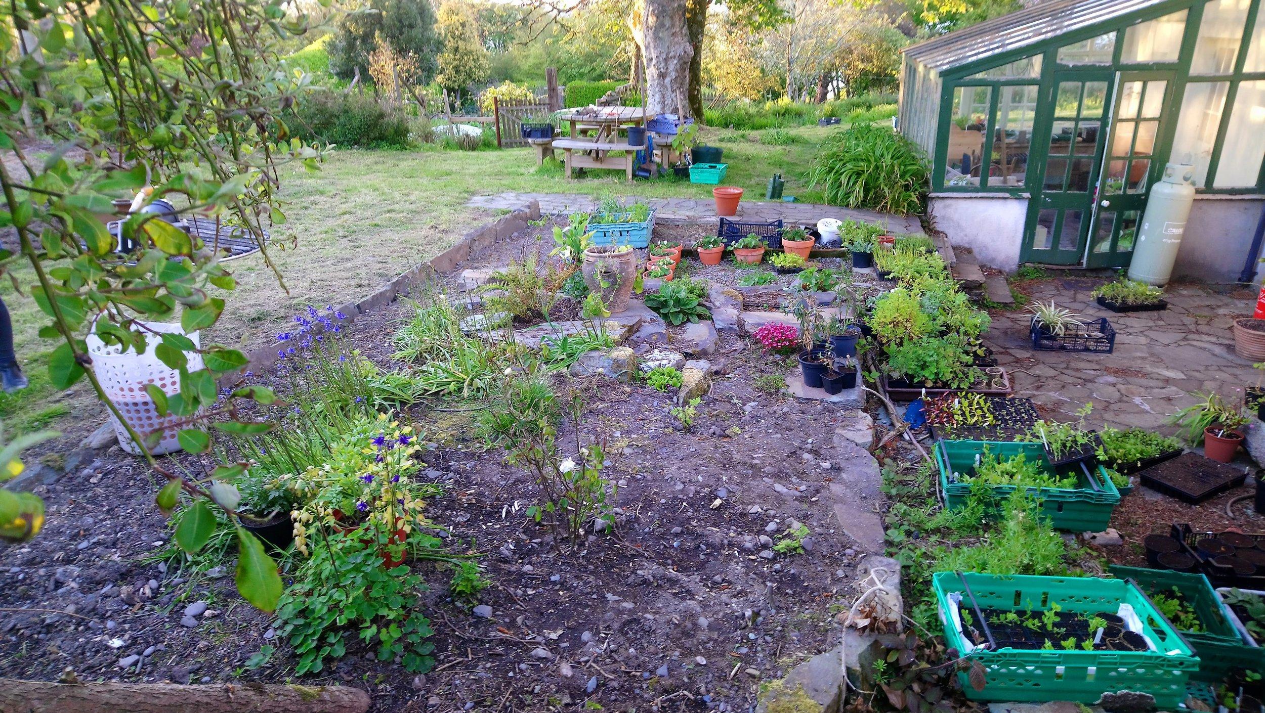 Blog Glebe Gardens
