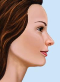 normal profile