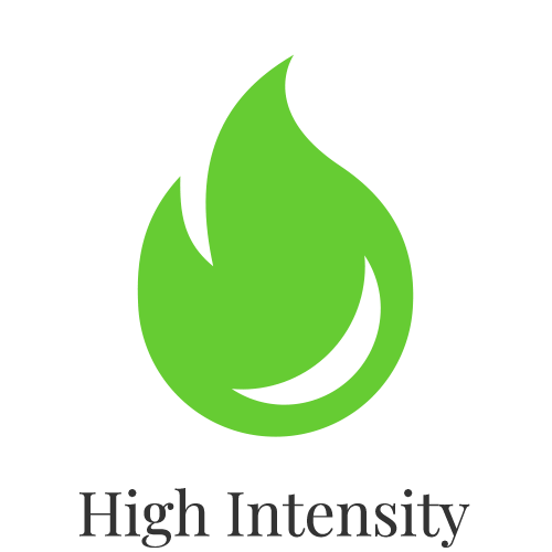 Fit icons - Green - High Intensity.png