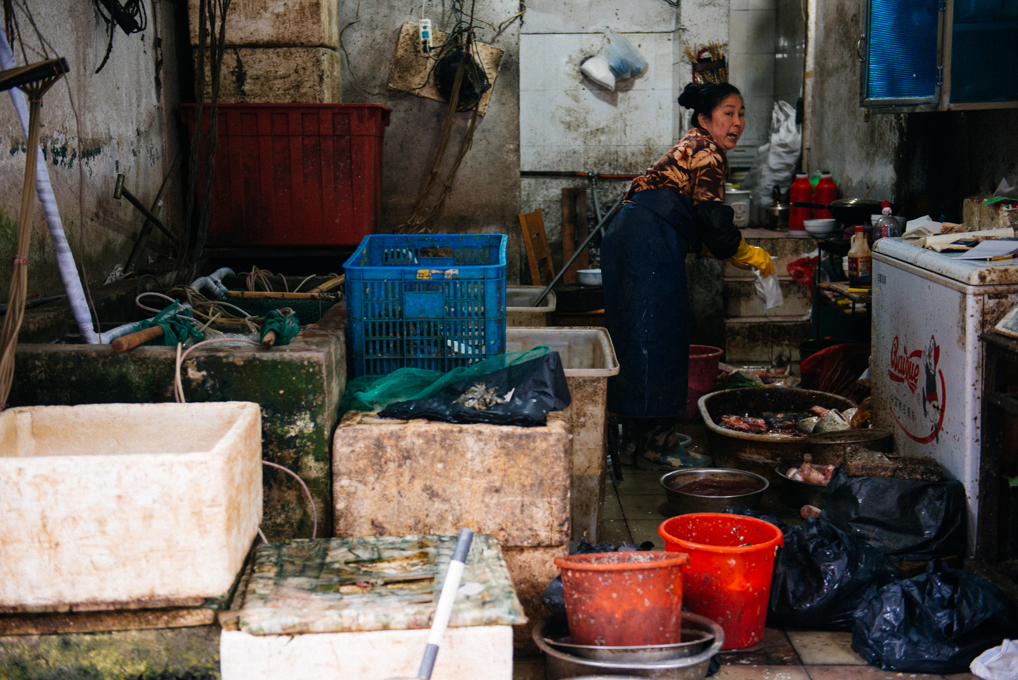 Fish saleswoman argues with customer as she bags his purchase. In front of the shop several tanks with live (and some not so much) animals are for sale.