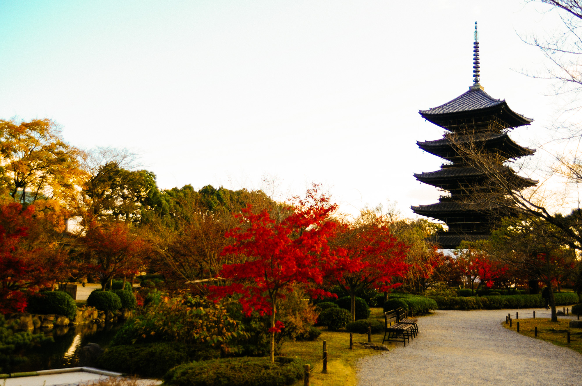 The five storied pagoda was original built in 826 is the tallest in all of Japan at 57 meters.