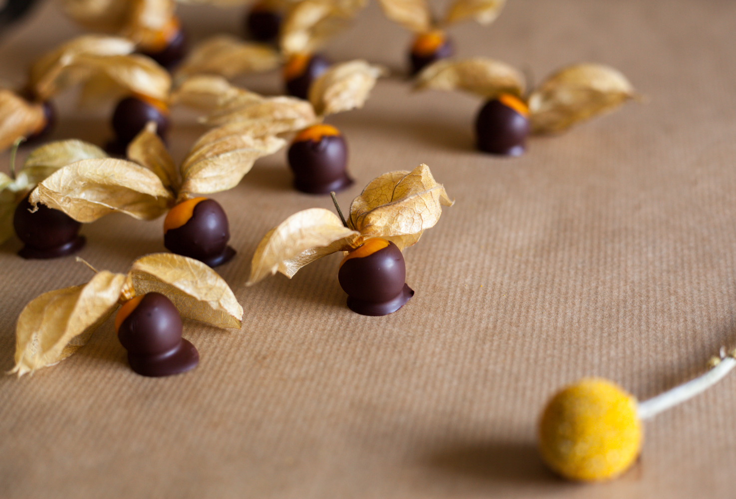 Chocolate Dipped Physalis Berries