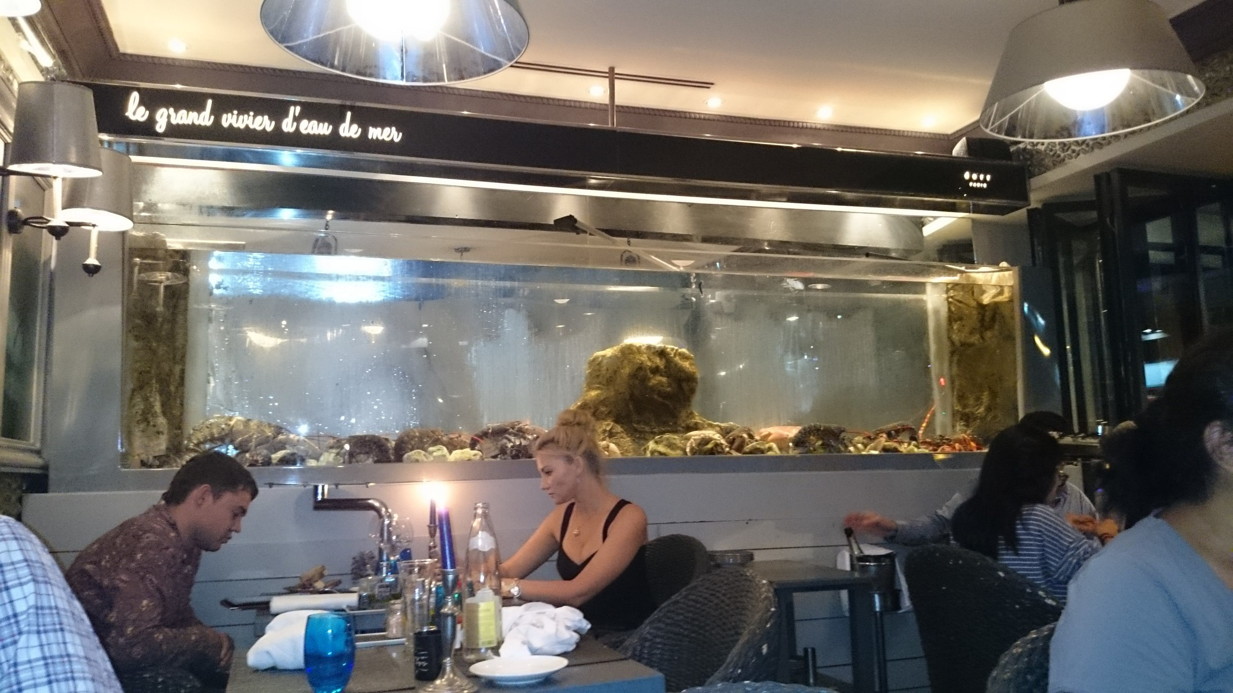 この大きい水槽が印象的。。  Restaurant 「Le bar à Huitres」  32 rue saint- jacques 75005 paris  TEL: +33 144 07 27 37  月曜~日曜 無休 12時 ~24時   http://www.lebarahuitres.com/fr/index.php