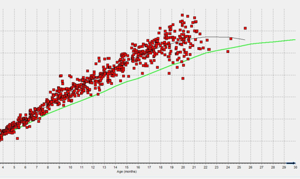Graph showing body weight of youngstock (y axis) and age in months (x axis) compared to targets.
