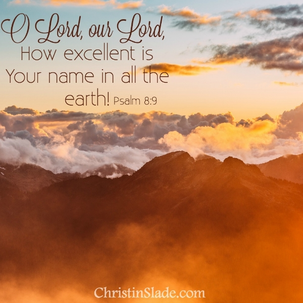O Lord, our Lord, how excellent is Your name in all the earth! Psalm 8:9