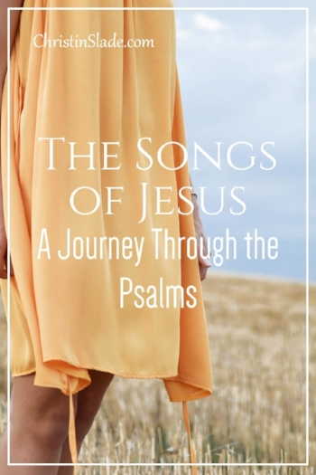 If you are in need of a biblically solid devotional that packs a puch, I recommend The Songs of Jesus by Timothy Keller.
