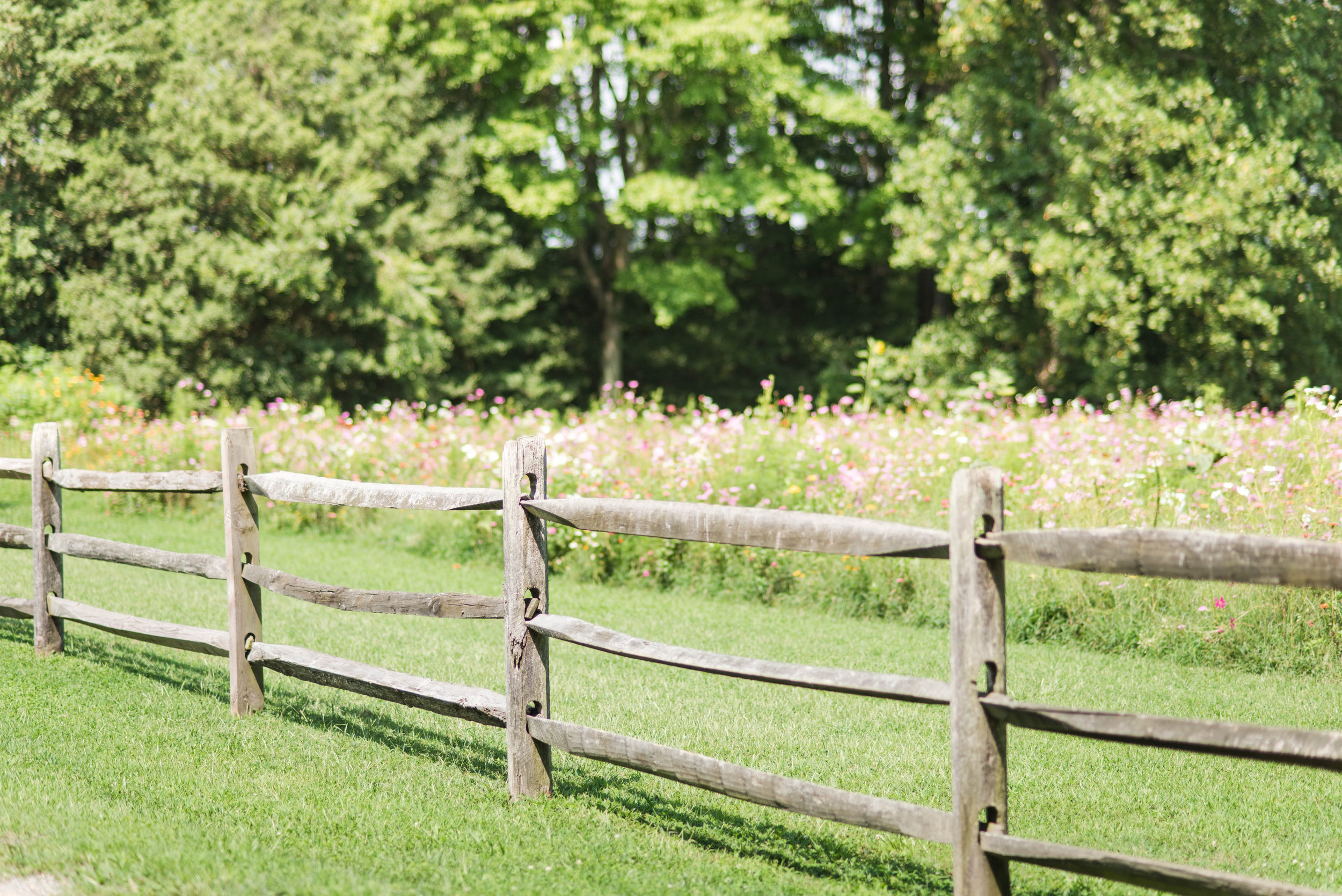Brittney Schopen Favorites-0043.jpg