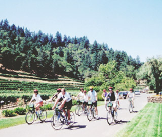 WINERY BIKE TOURS