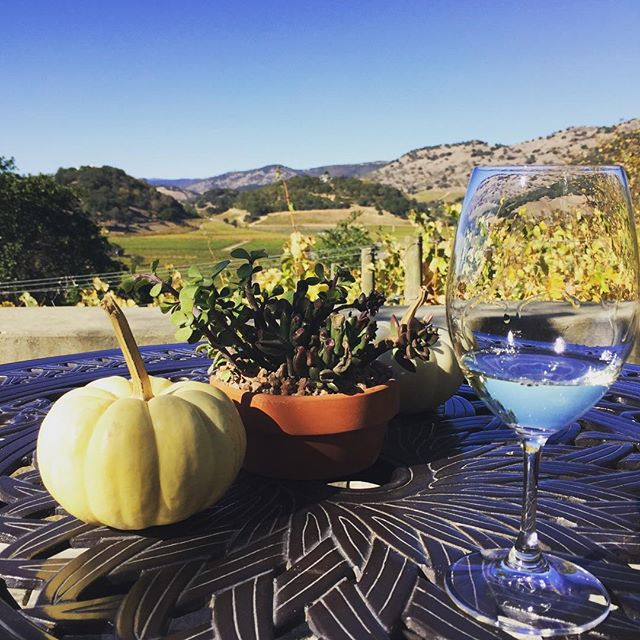 Cheers to another perfect fall weekend and gorgeous mountain views. #Friday #enjoynapa #sauvignonblanc #stagsleap #winetours #concierge