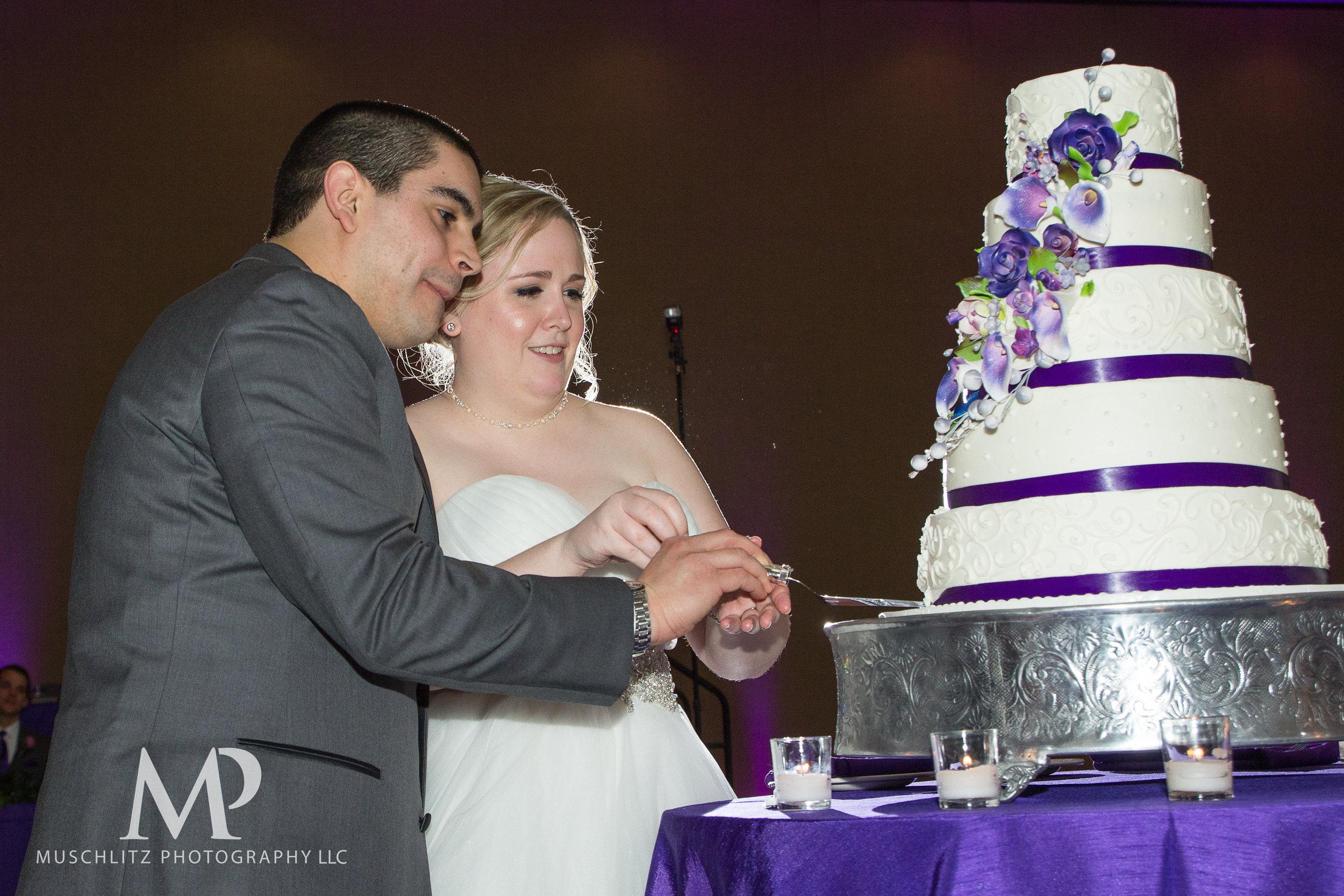 hilton-polaris-wedding-columbus-ohio-muschlitz-photography-036.JPG