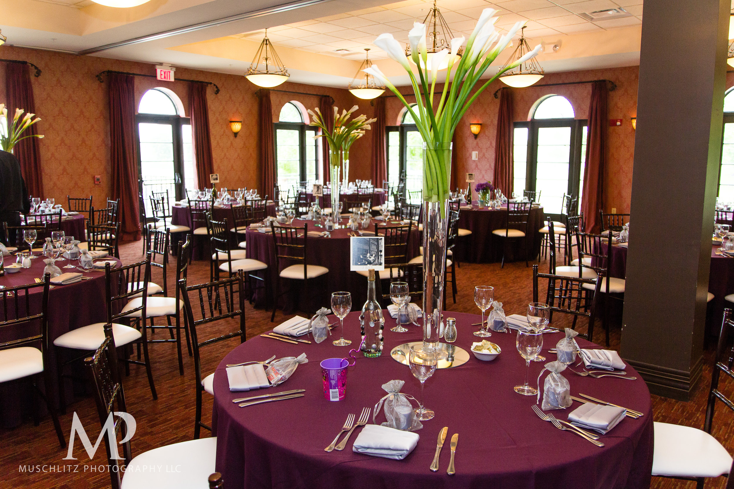club-at-corazon-wedding-ceremony-reception-columbus-dublin-ohio-ohio-university-theme-062.JPG