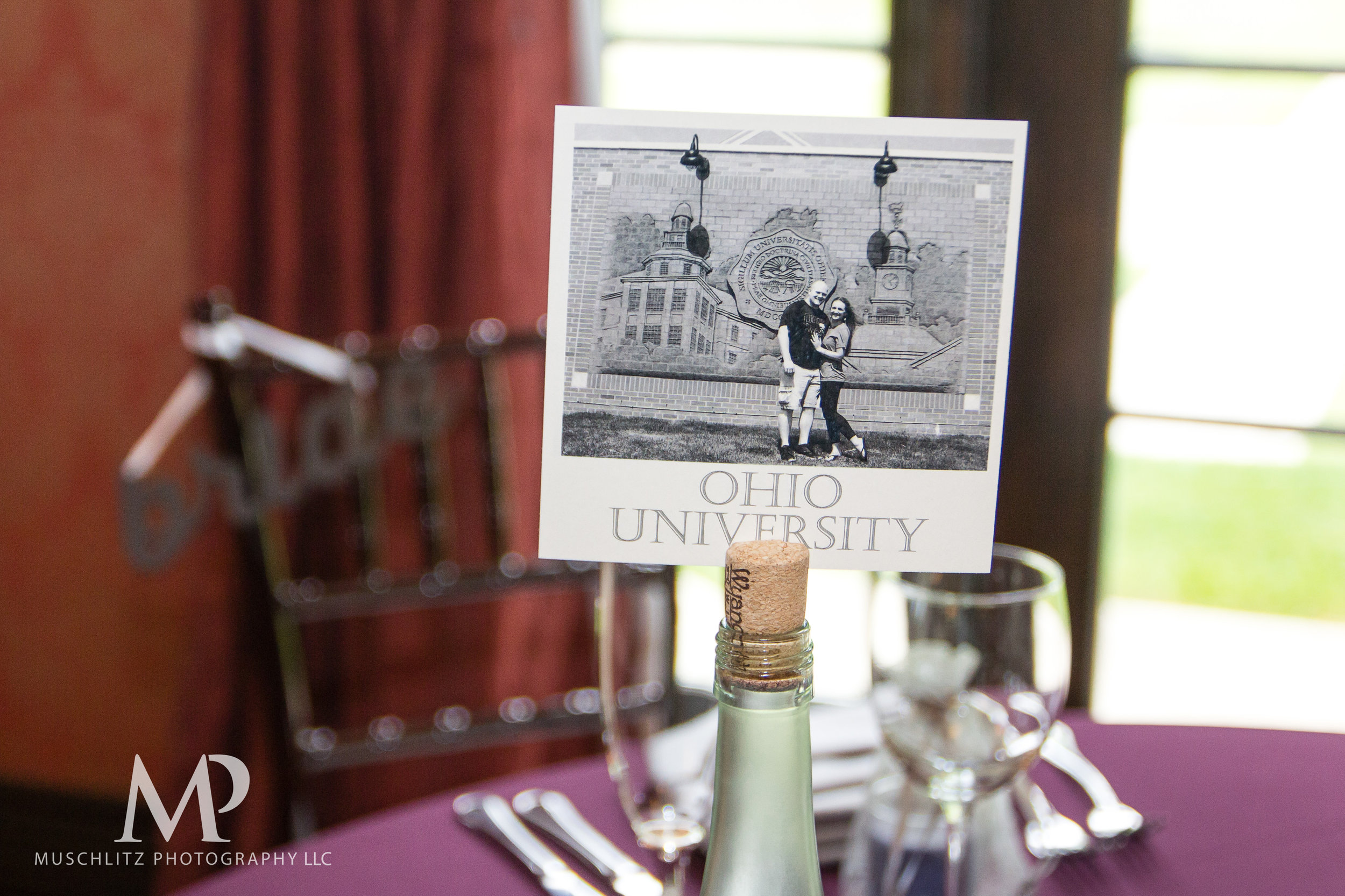 club-at-corazon-wedding-ceremony-reception-columbus-dublin-ohio-ohio-university-theme-068.JPG