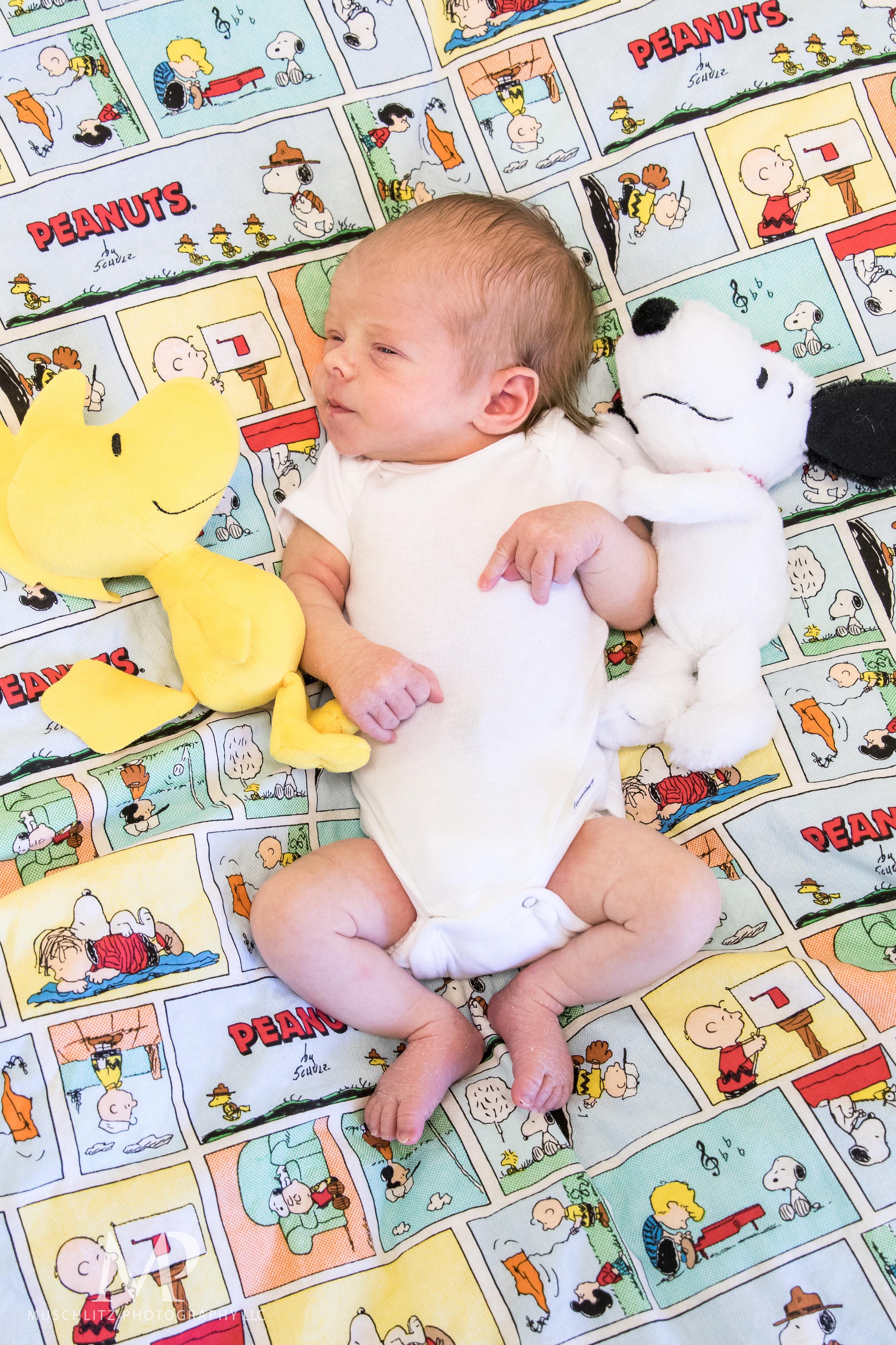 newborn-baby-photographer-columbus-ohio-gahanna-muschlitz-photography-002.JPG