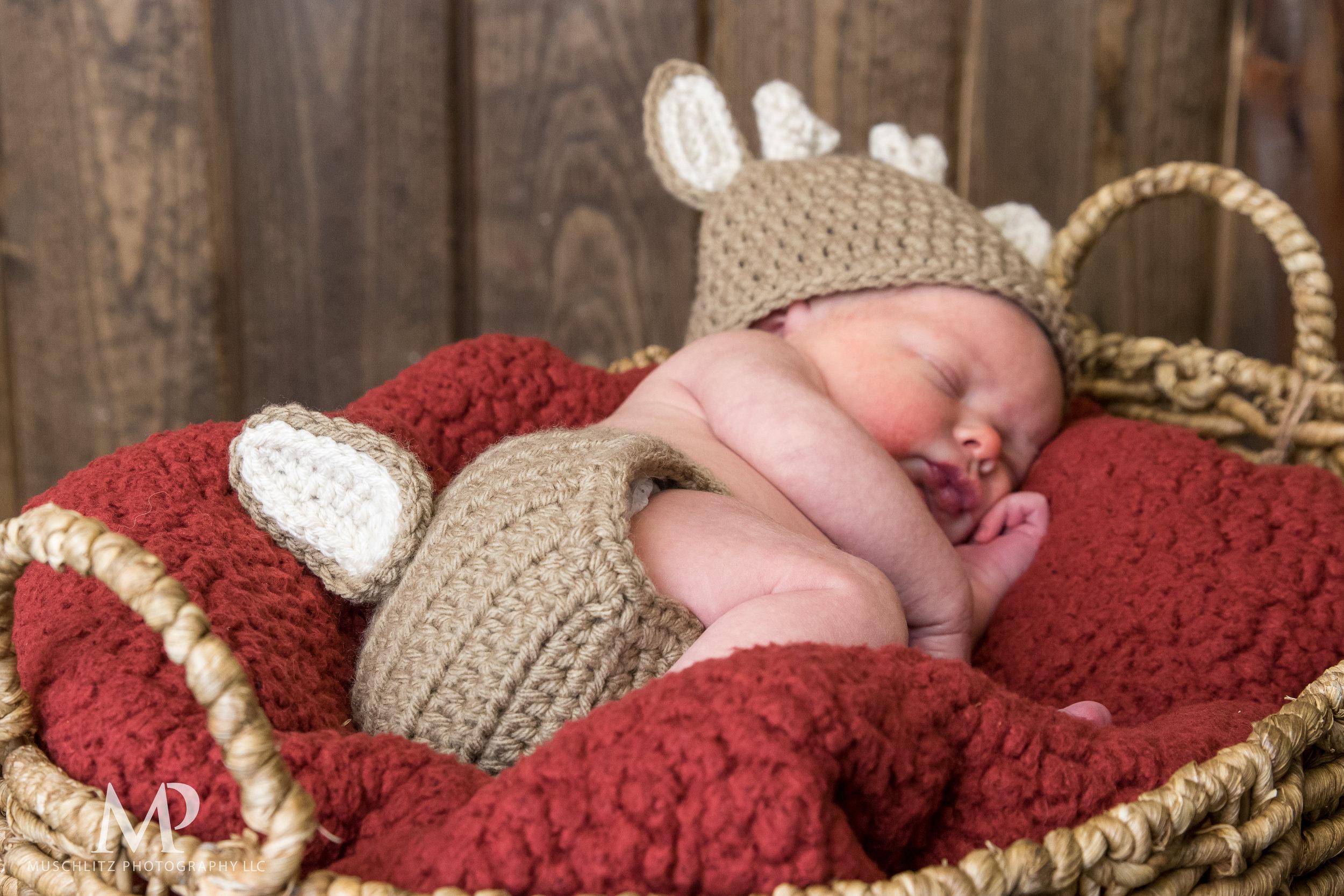 newborn-baby-portraits-photos-studio-holiday-columbus-gahanna-ohio-muschlitz-photography-002.JPG