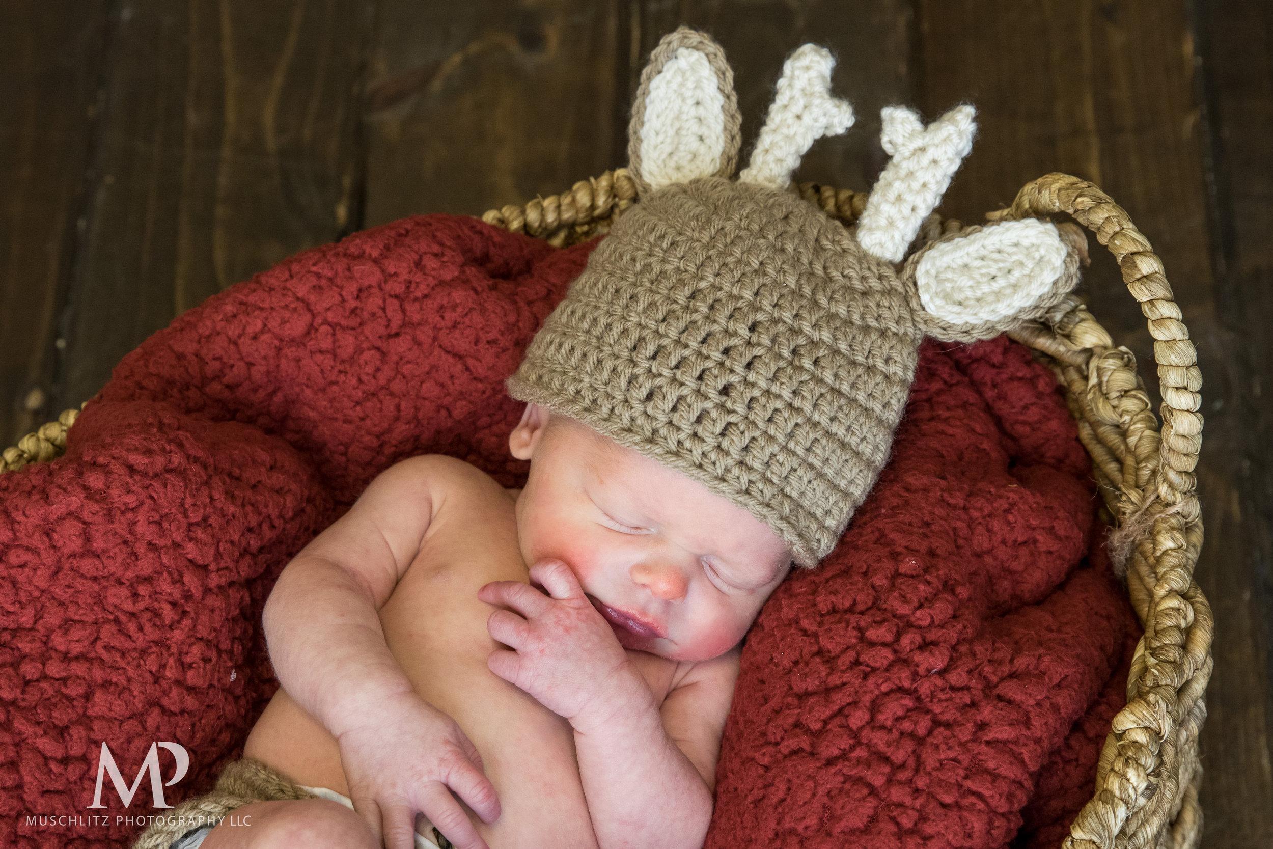 newborn-baby-portraits-photos-studio-holiday-columbus-gahanna-ohio-muschlitz-photography-003.JPG