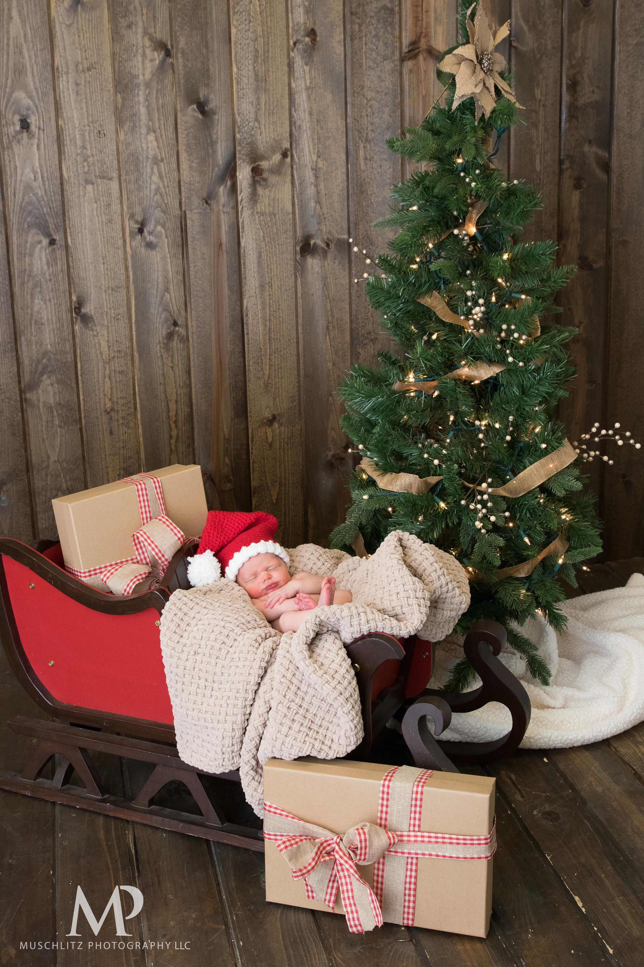 newborn-baby-portraits-photos-studio-holiday-columbus-gahanna-ohio-muschlitz-photography-006.JPG