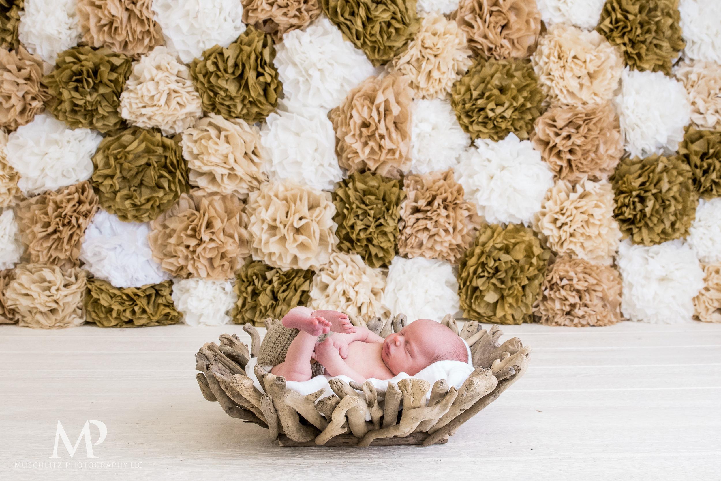 newborn-baby-portraits-photos-studio-holiday-columbus-gahanna-ohio-muschlitz-photography-014.JPG