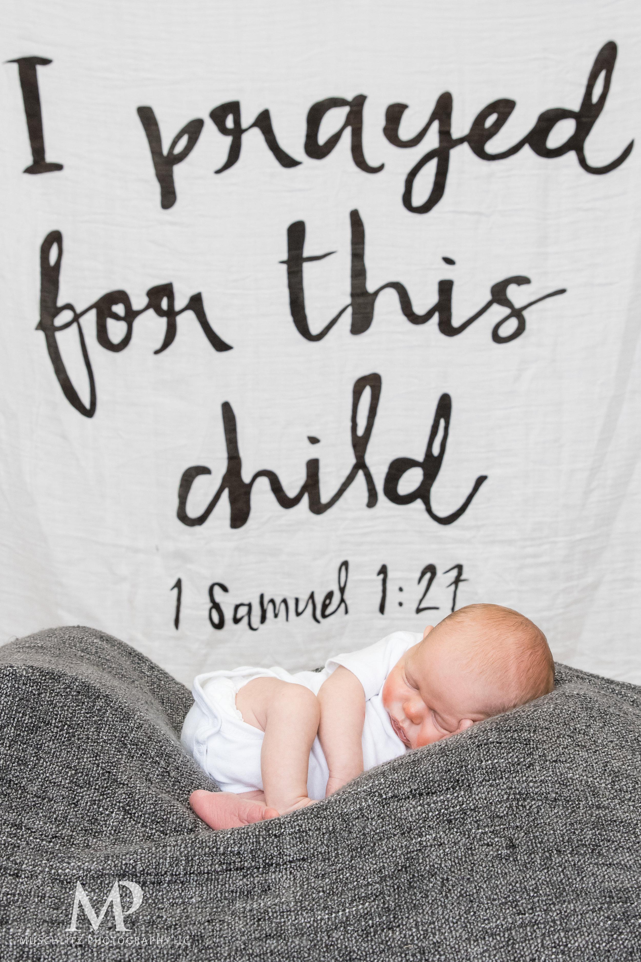 newborn-baby-portraits-photos-studio-holiday-columbus-gahanna-ohio-muschlitz-photography-023.JPG