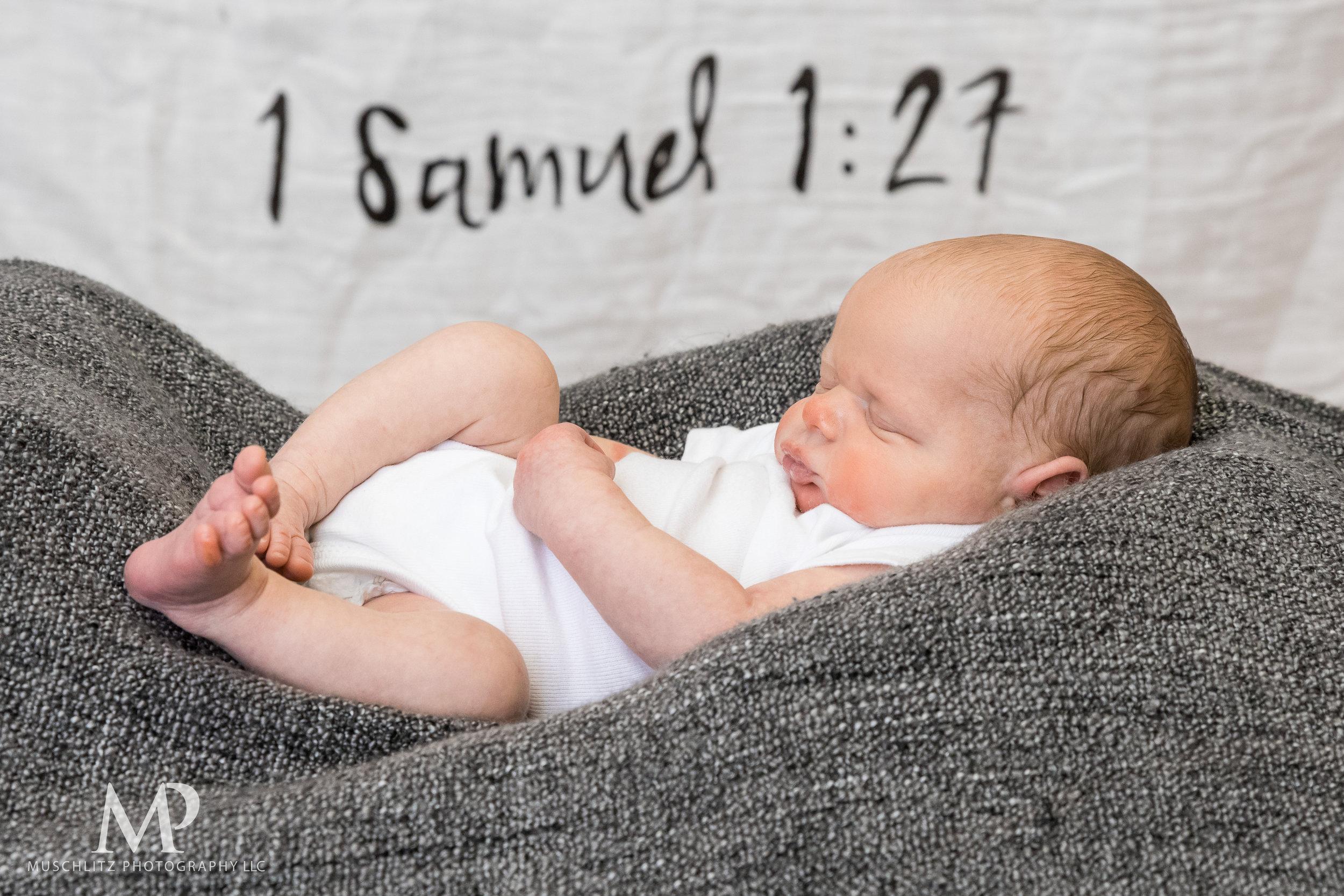 newborn-baby-portraits-photos-studio-holiday-columbus-gahanna-ohio-muschlitz-photography-027.JPG