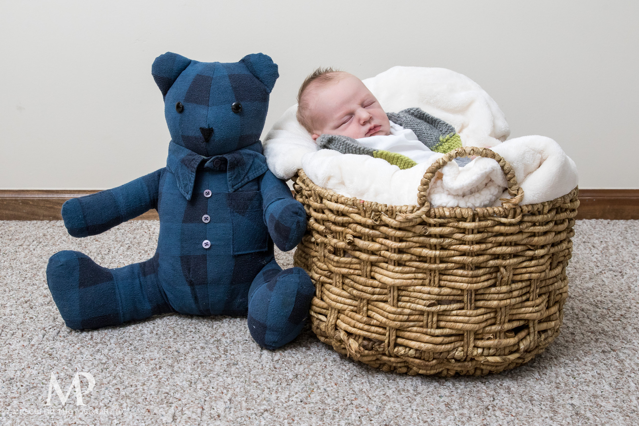Columbus-Ohio-Newborn-Portrait-Session-Home-095.JPG