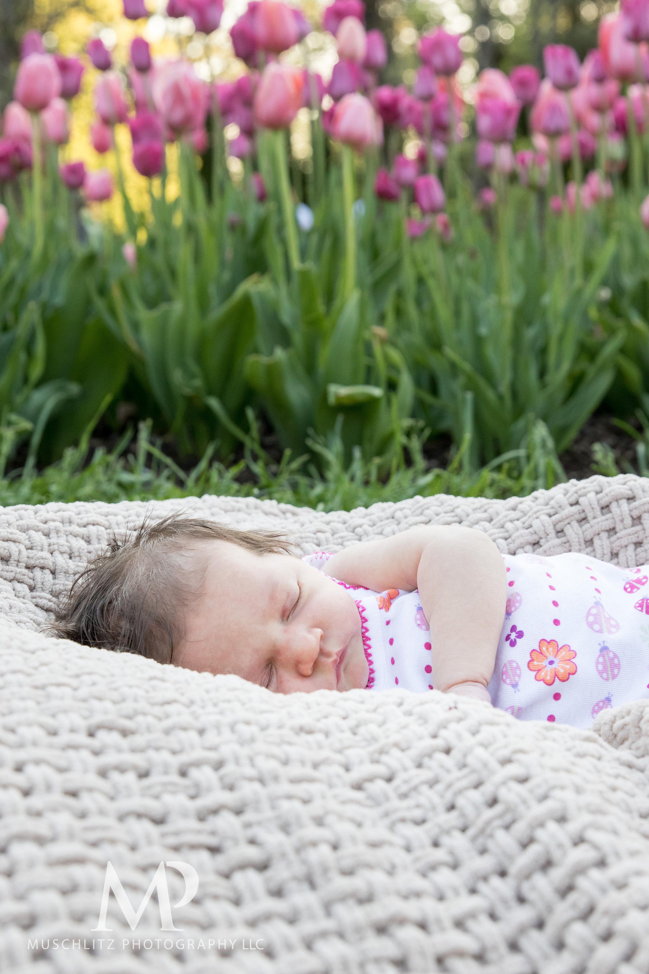 newborn-baby-family-portrait-session-spring-inniswood-metro-gardens-columbus-ohio-022.JPG