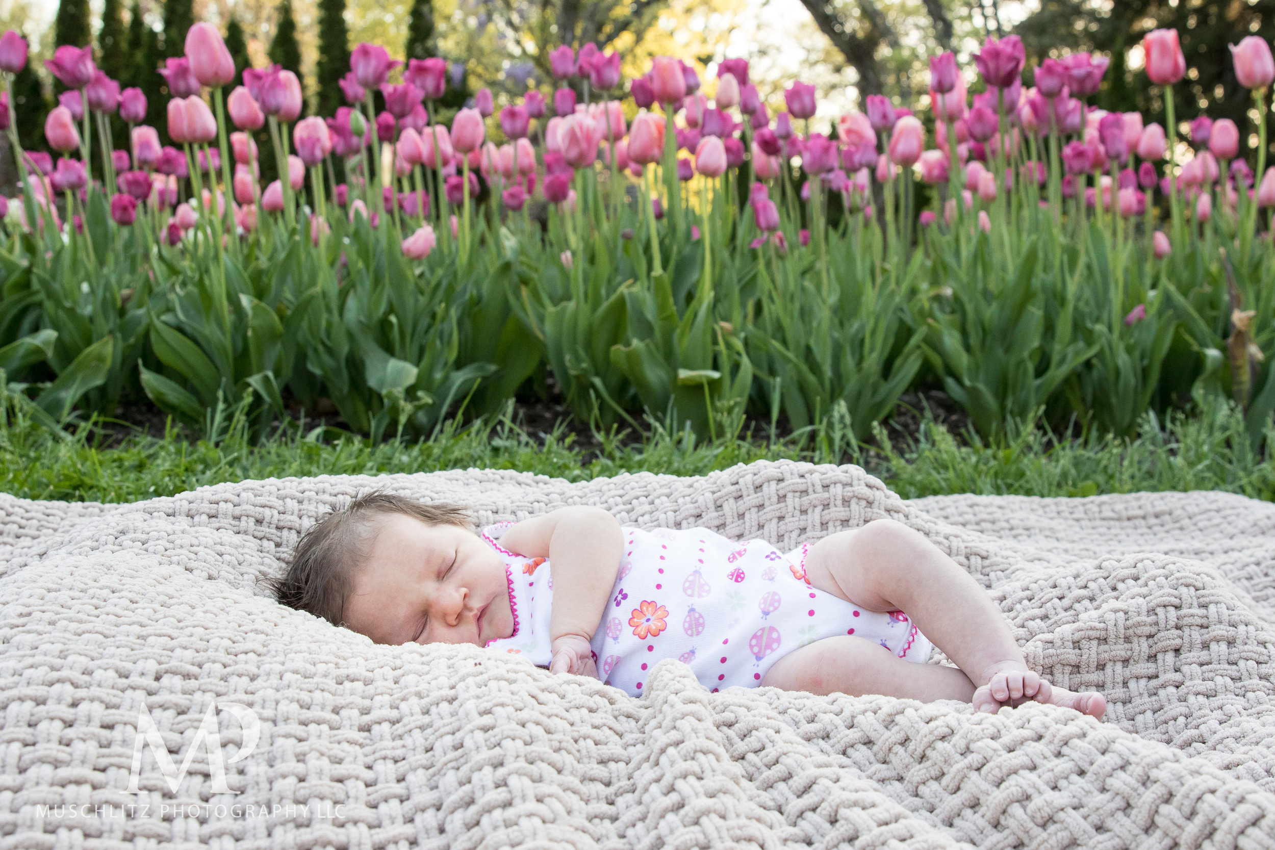 newborn-baby-family-portrait-session-spring-inniswood-metro-gardens-columbus-ohio-023.JPG