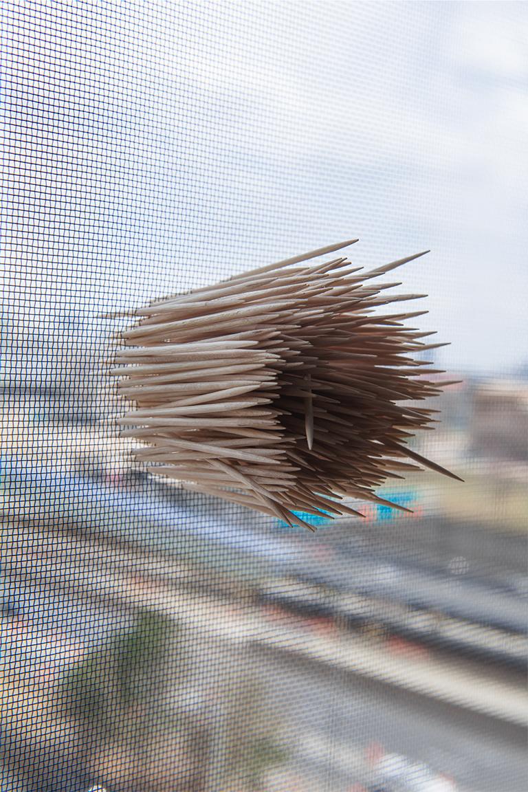 toothpickweb.jpg