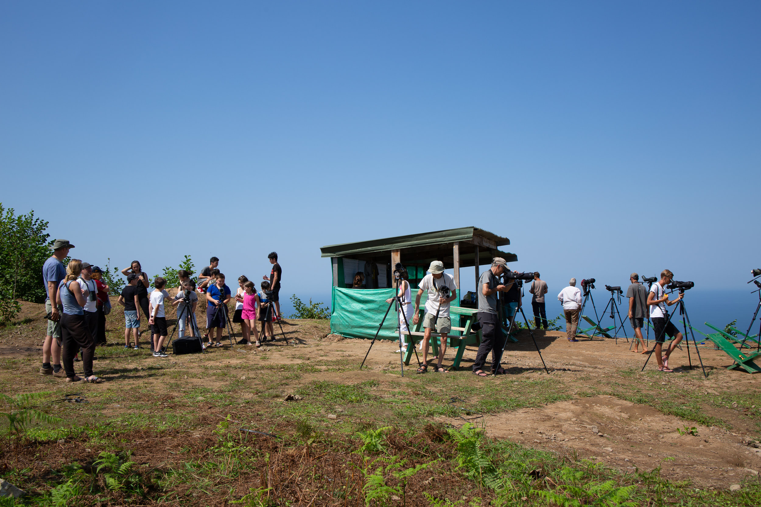 September 6th.  With local schools regularly visiting the counting sites, the Batumi Raptor Count is also a platform for environmental education.