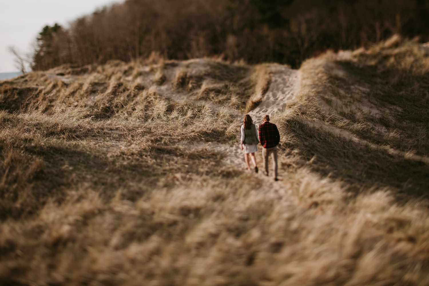 sand-dune-forrest-engagement-grand-rapids-047.JPG