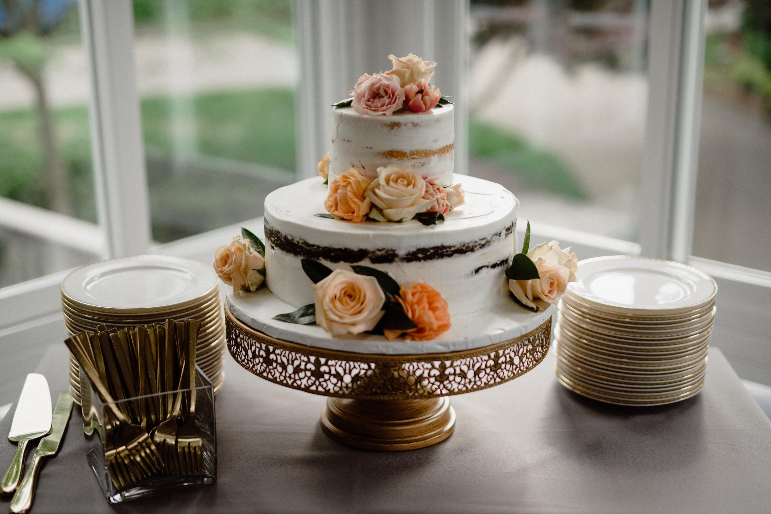 Elizabeth and Aldens Intimate Backyard wedding in Nashville Tennessee Wedding Photographer00031.jpg