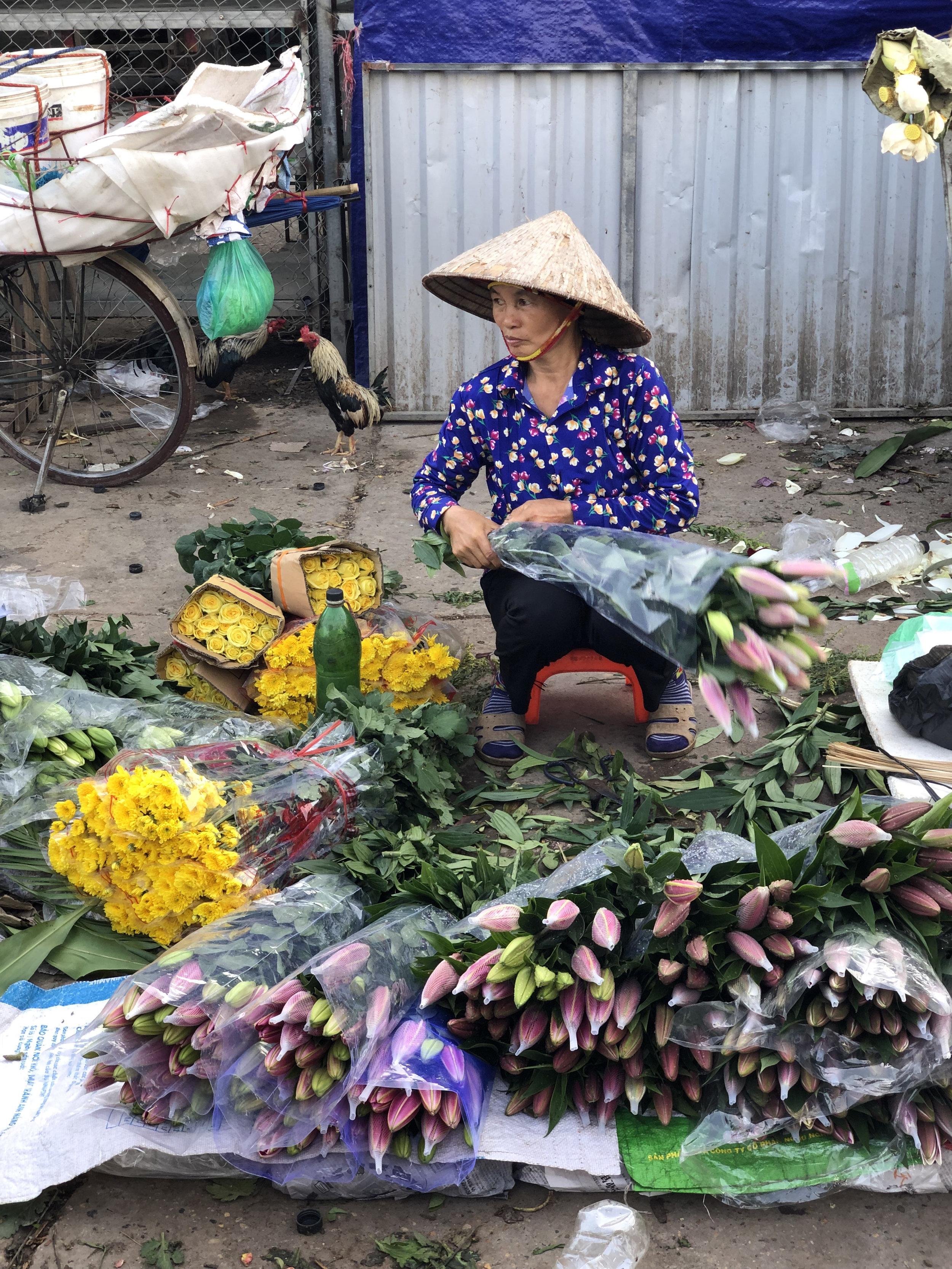 Hanoi PJL  - 7.jpg
