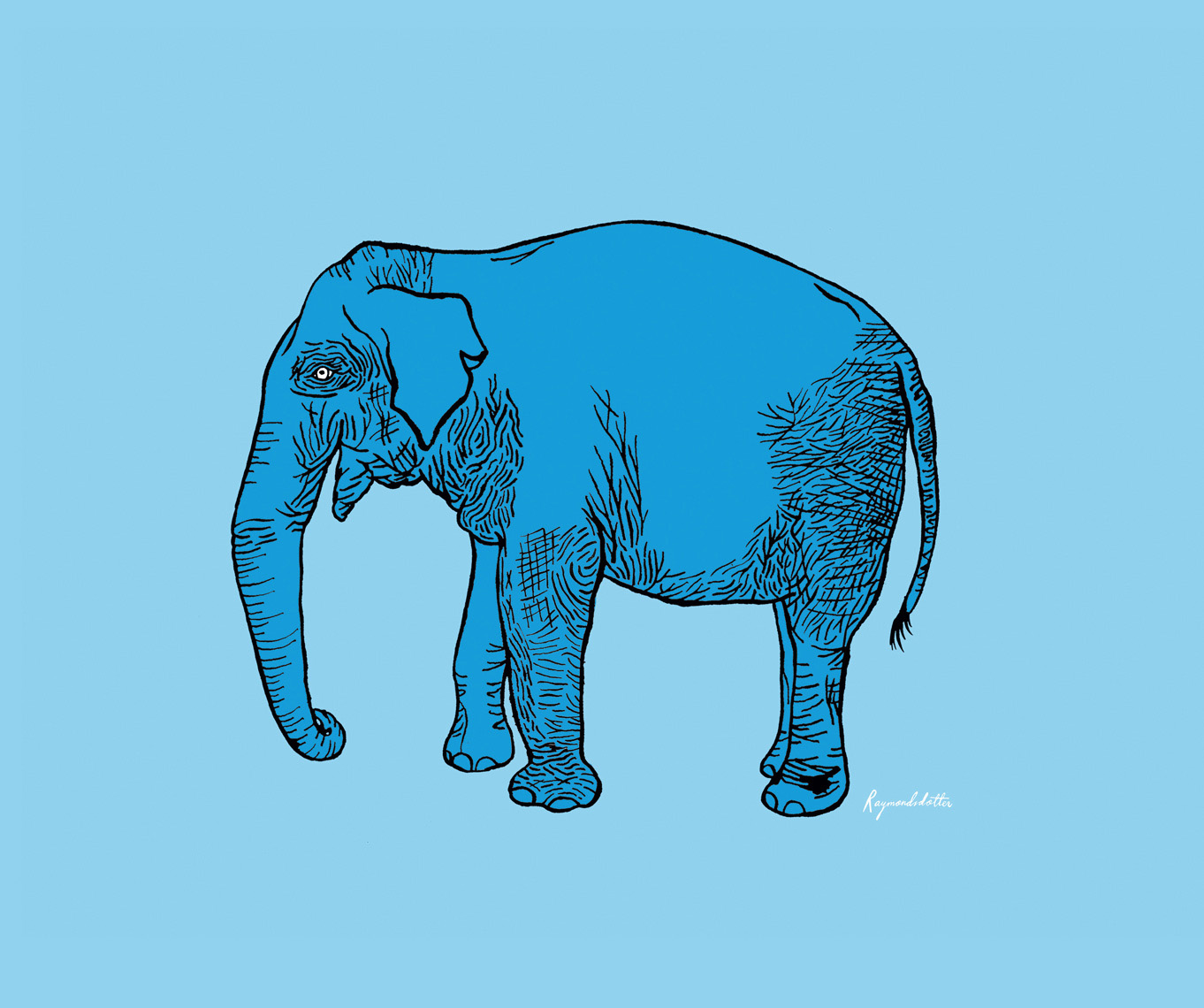 Elephant character for a kids poster