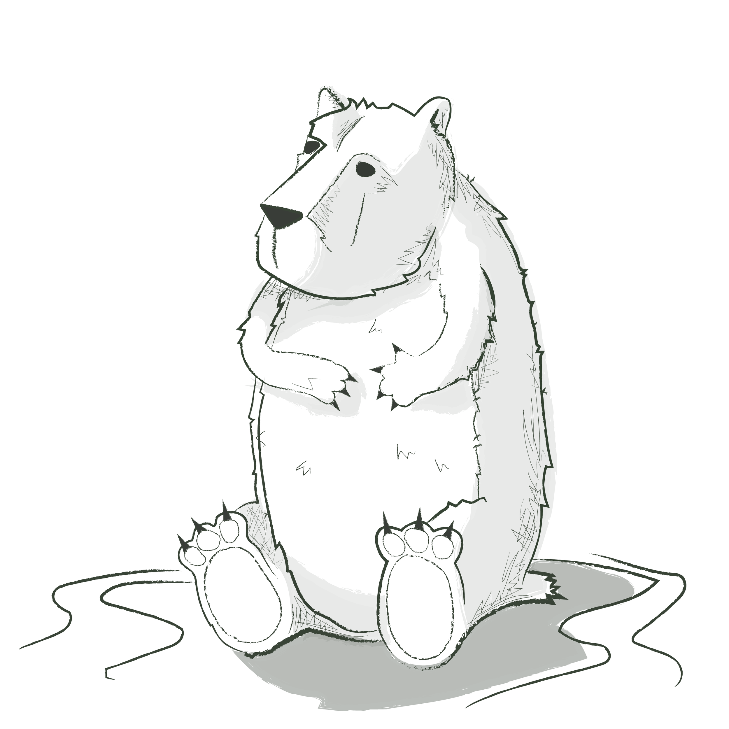 bear-crop-01.png