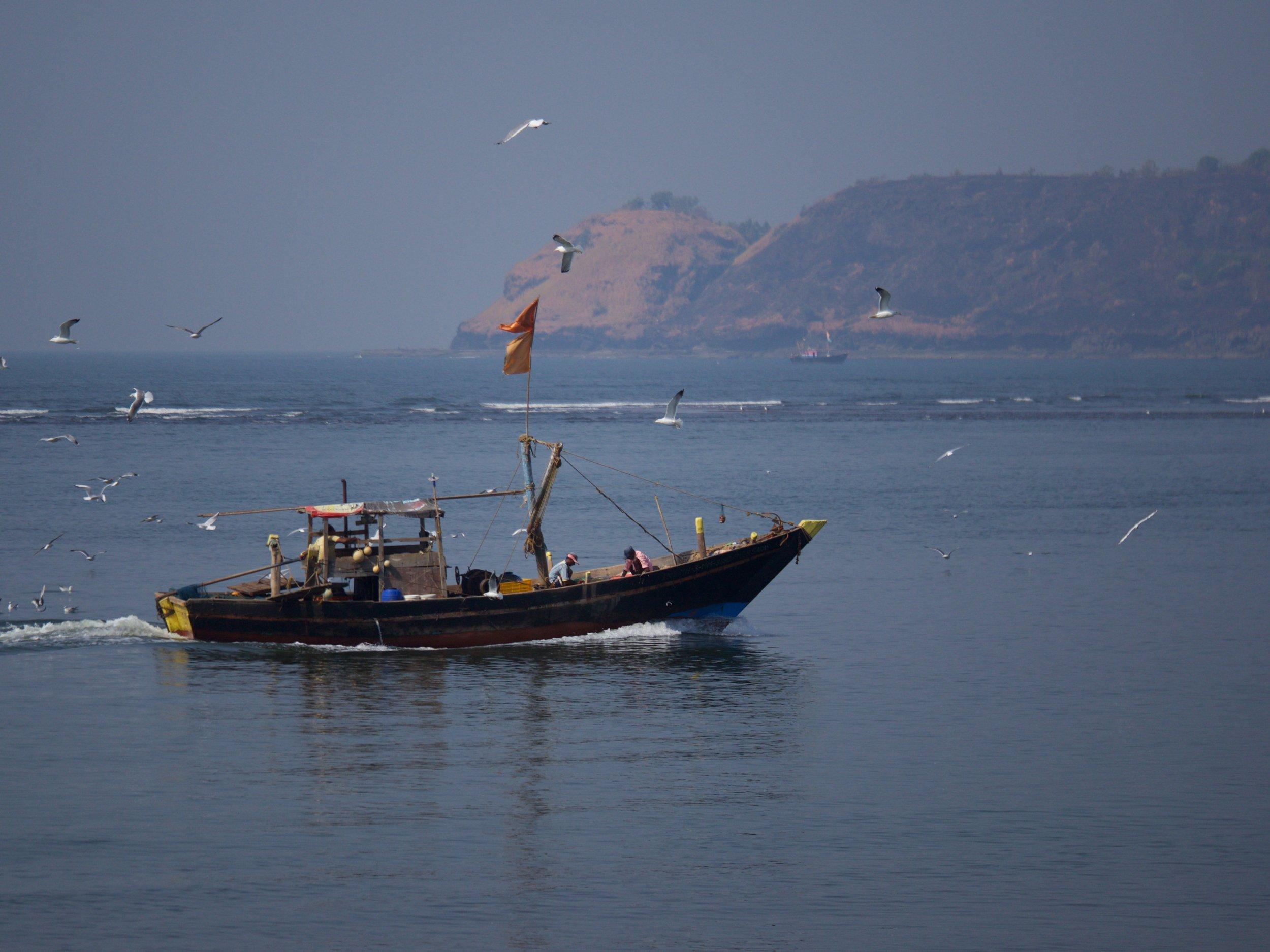 A fishing boat returns to port near Velas