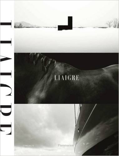 8. Liaigre: Twelve Projects by Christian Liaigre