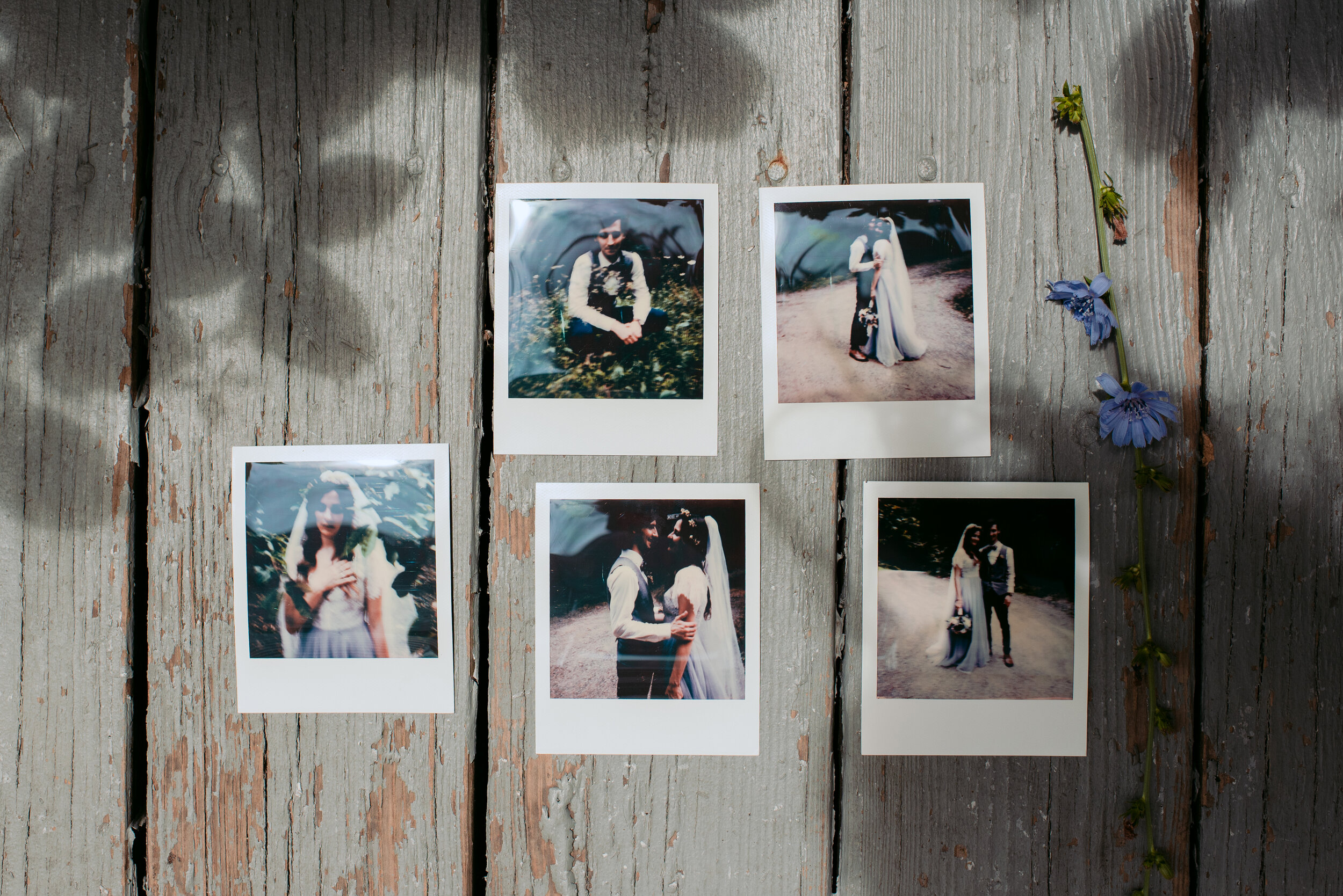 Minneapolis Wedding Photographer | Rivets & Roses | Photography by Tara Sloane