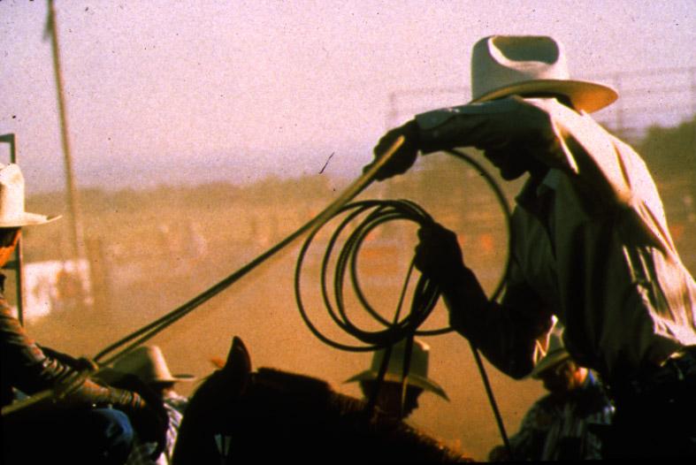 Horse-Tales-1-COWBOY.jpg