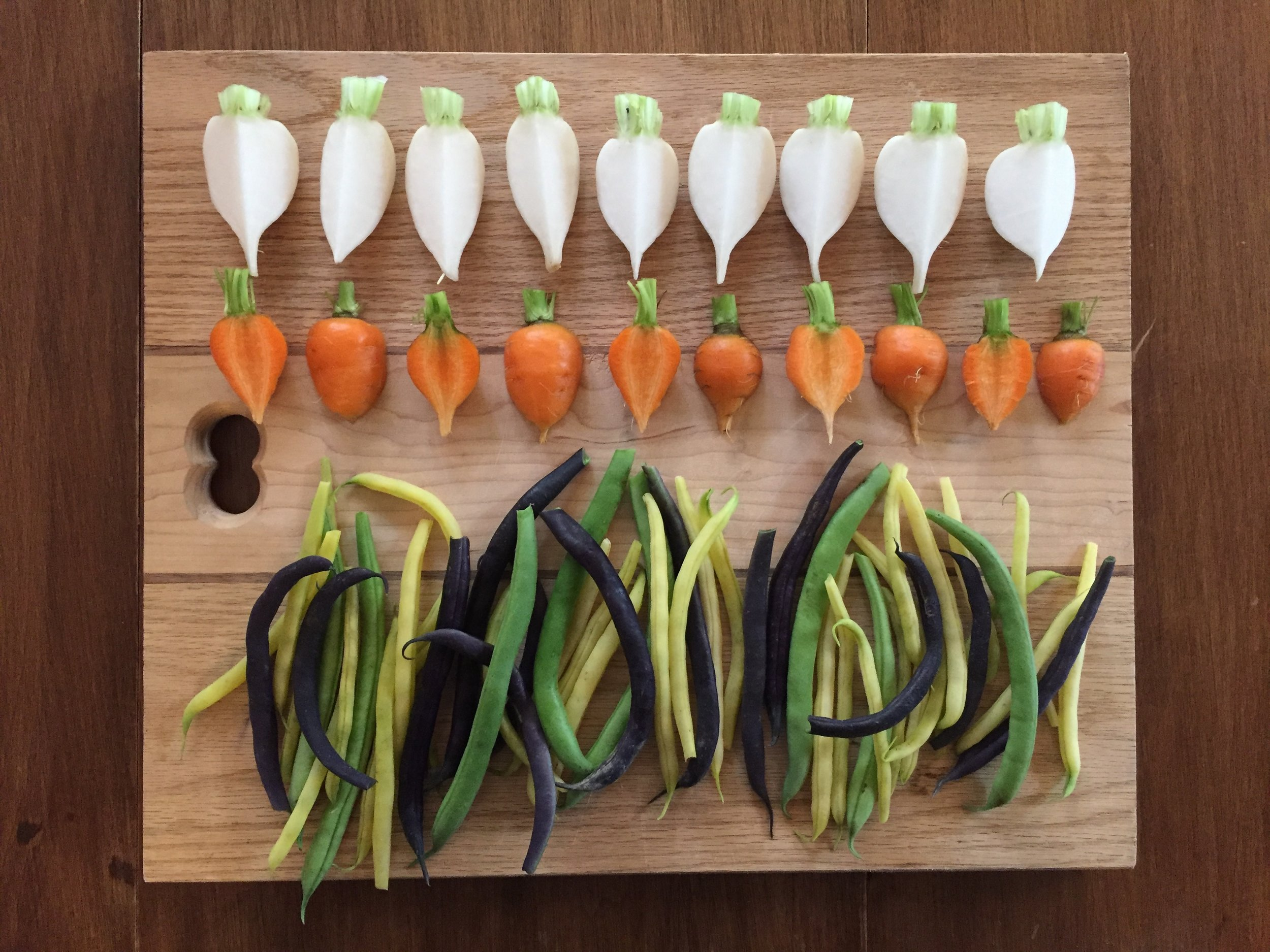 Salad Turnips, Thumbelina Carrots, MultiColour Beans