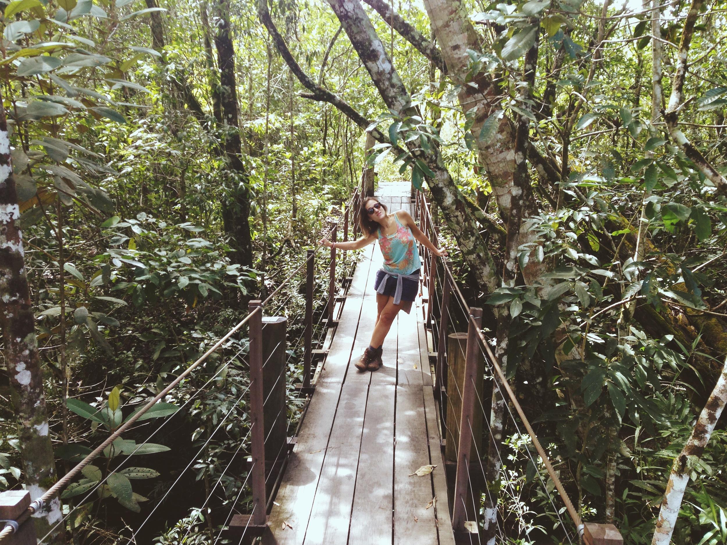 Cachoeira da Loquinhas, Alto Paraíso - GO.