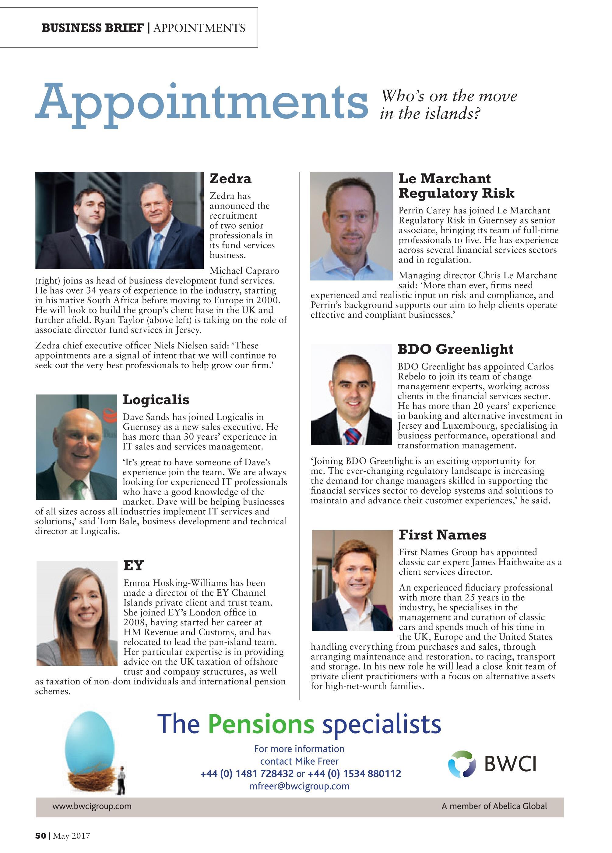 BDO Greenlight Business Brief.jpg