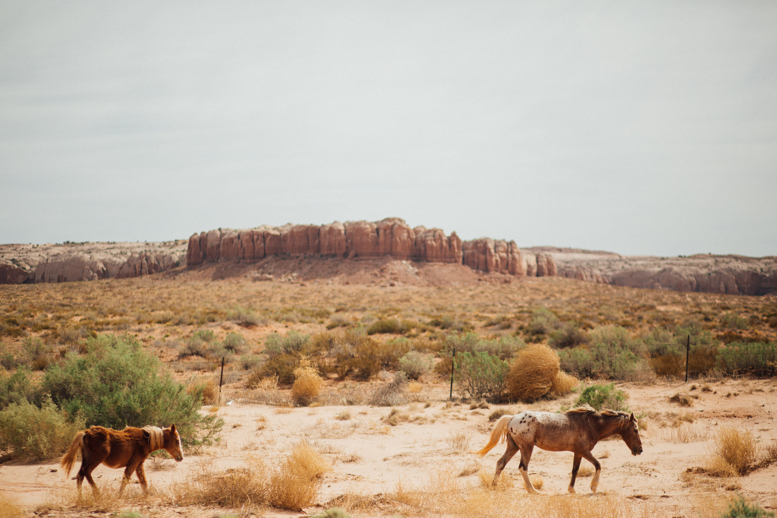 Out West Travel Photography