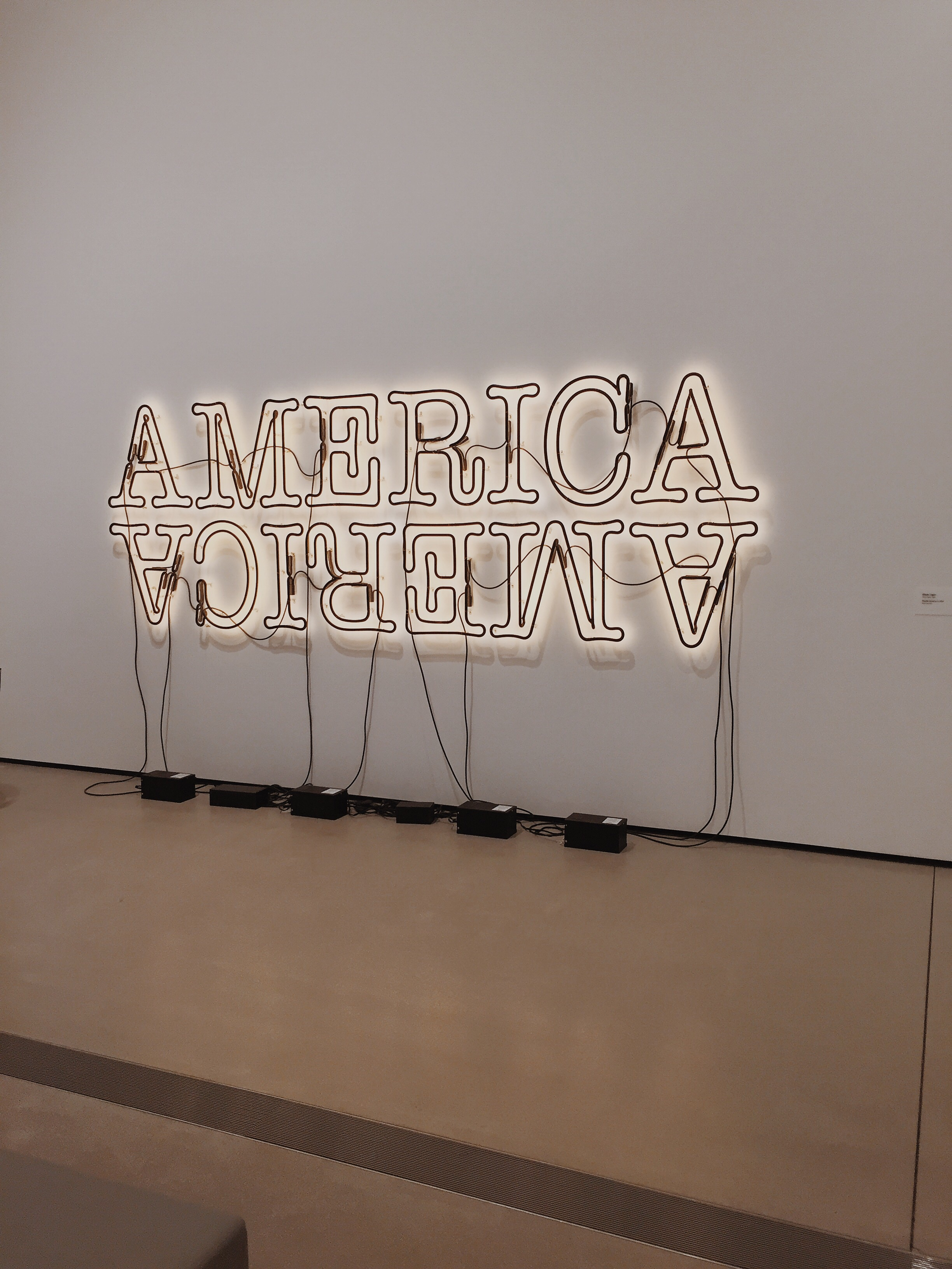 """Double America 2"" by Glenn Ligon"