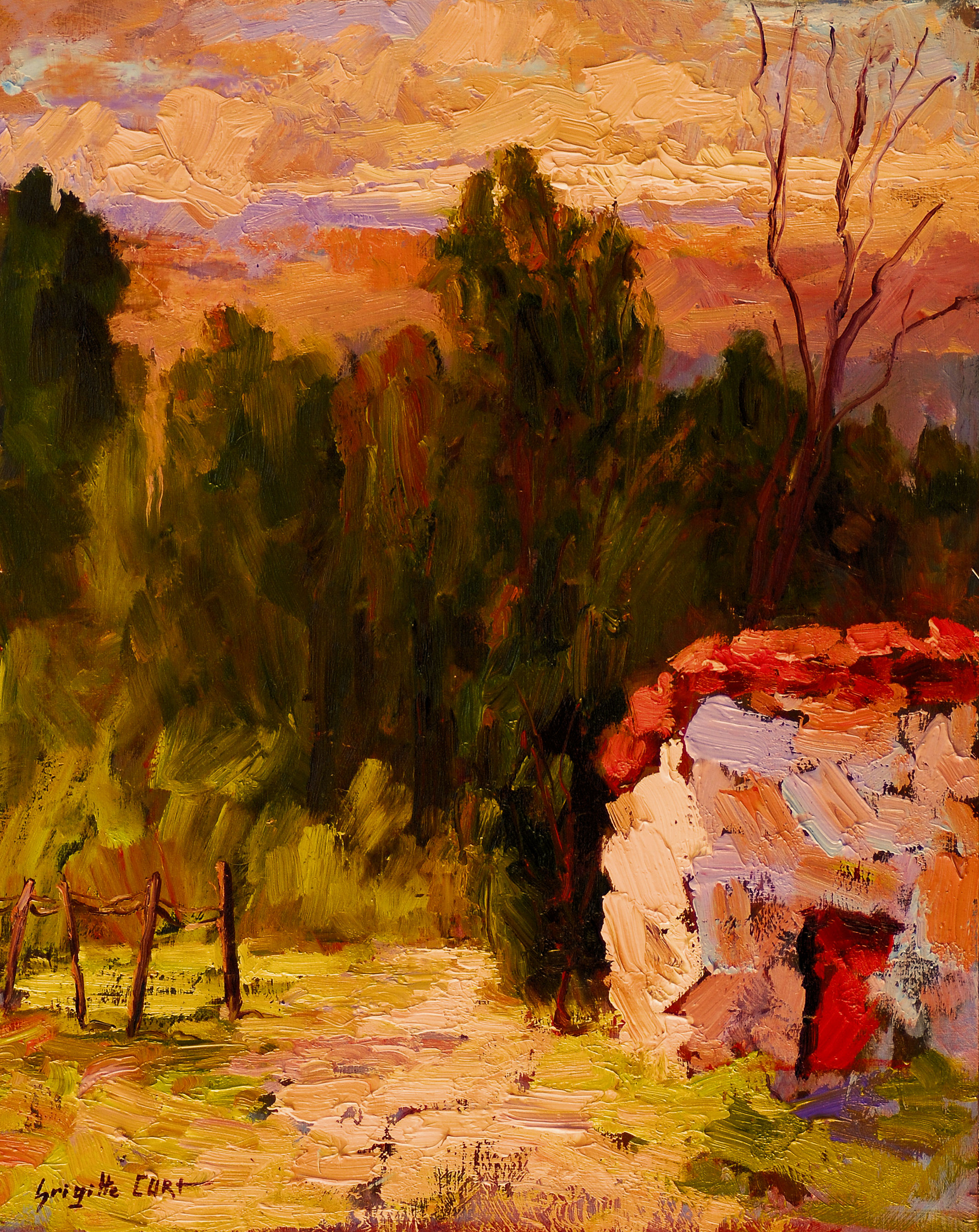 Sunset in the Garden 20 x 16.jpg