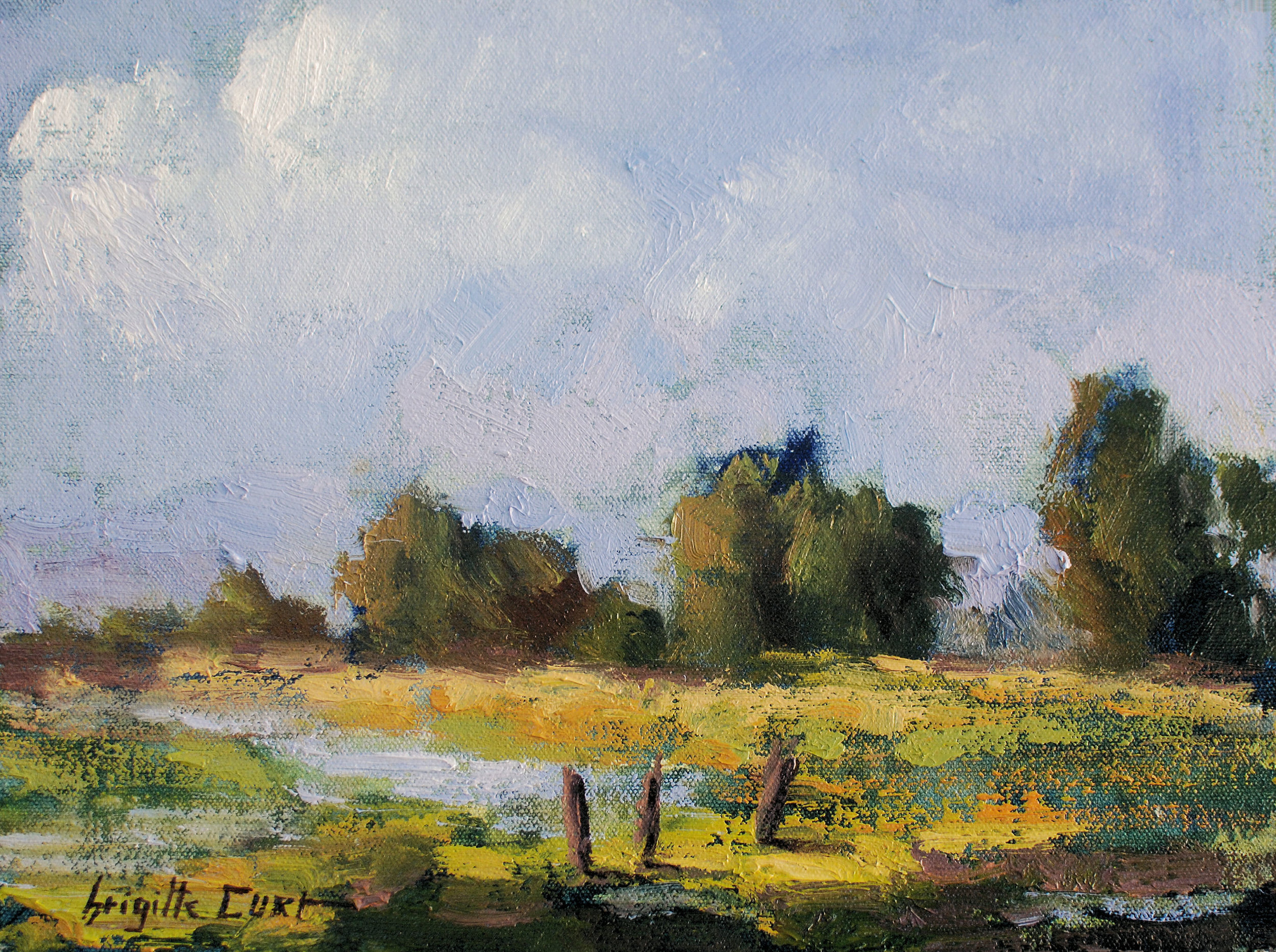 Fresh Morning Light 9 x 12 .jpg