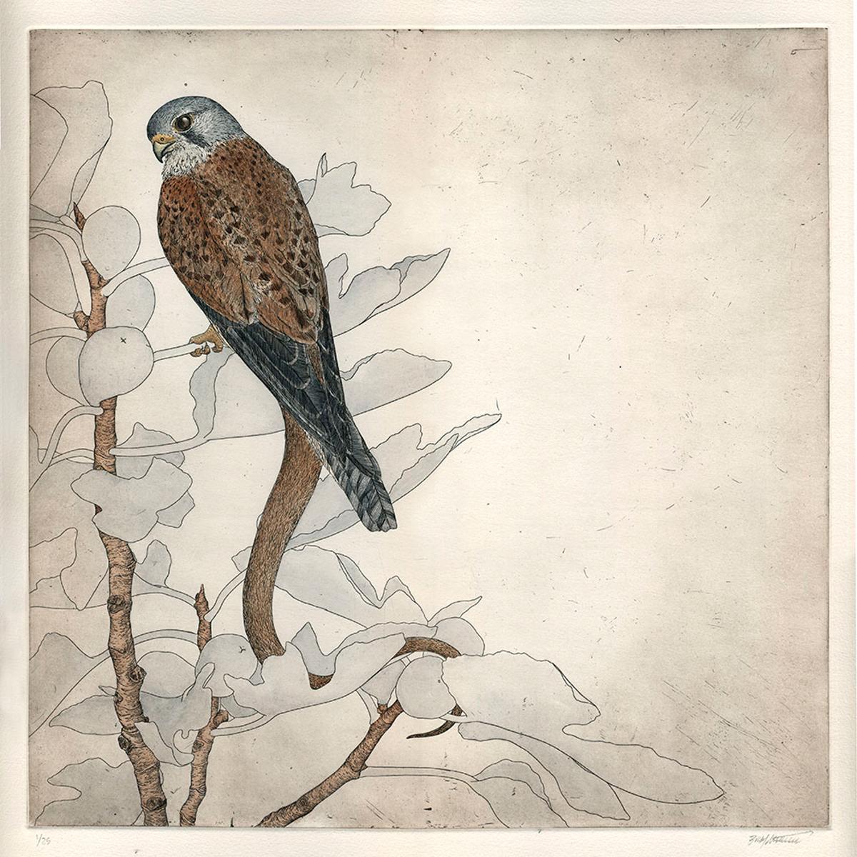 Falco Serpentes II