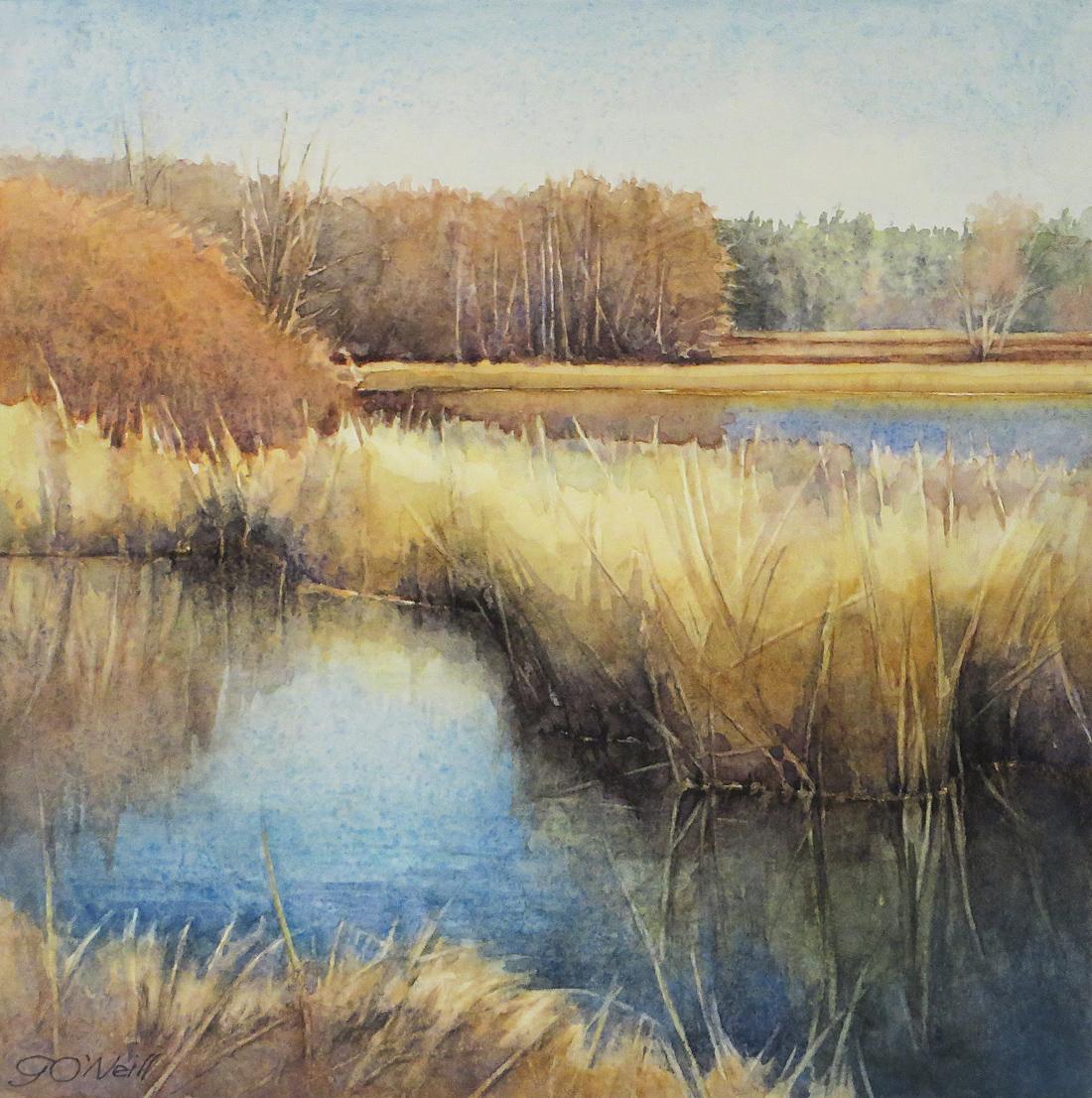 Deer Lagoon Ponds