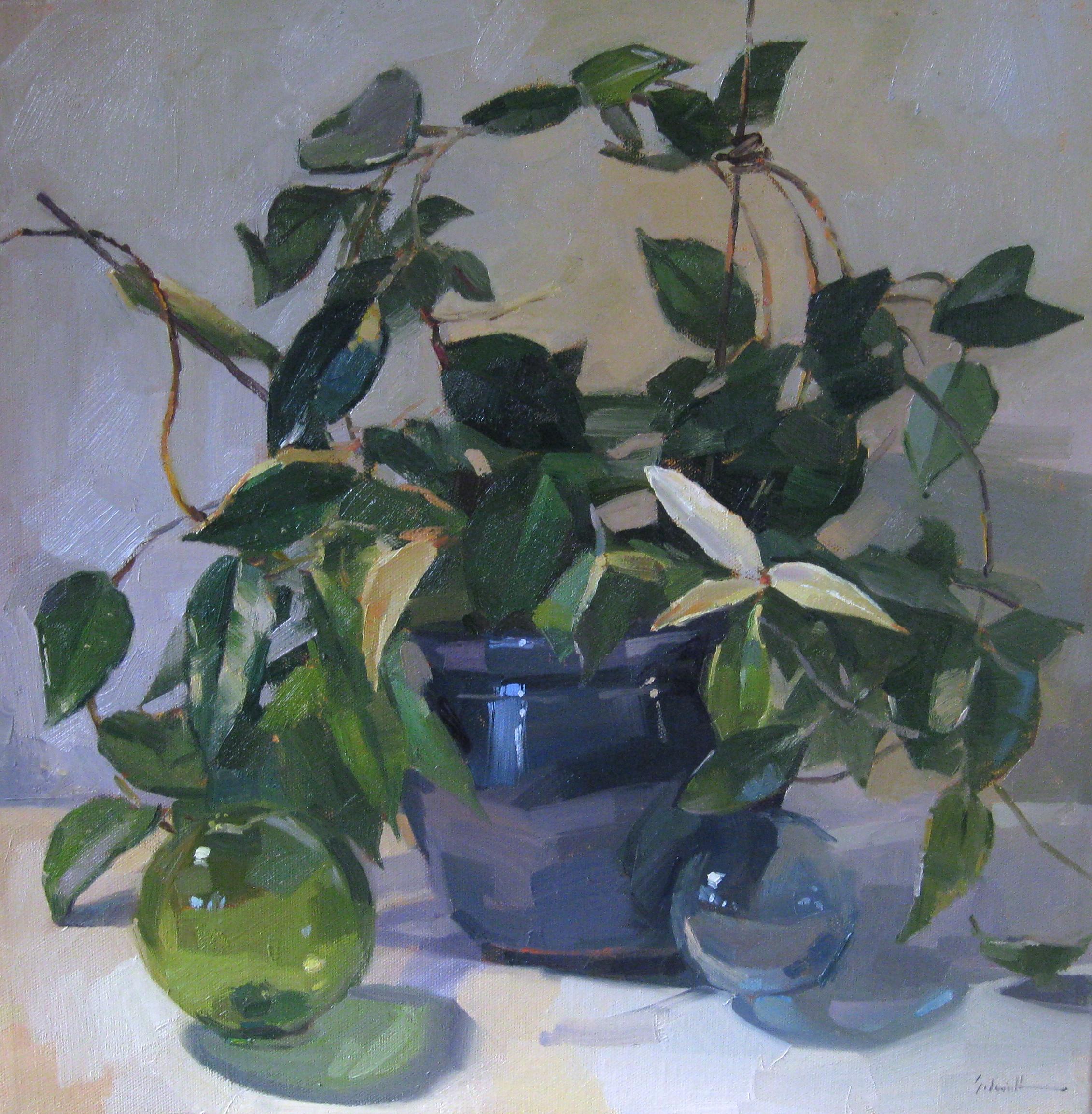 Hoya , oil, 16 x 16