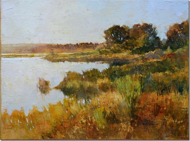 Late Afternoon at Deer Lagoon