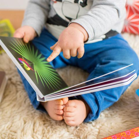 Book Subscription: Smallprint